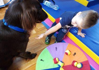 pise i chłopiec obok koła z kolorami i piłkami