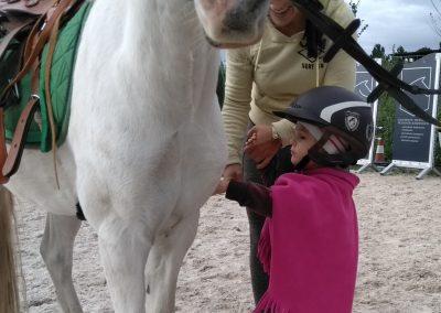 dziecko głaszczące konia