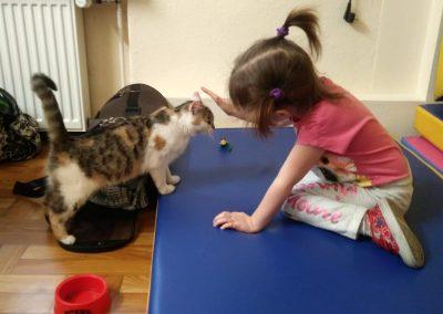 dziewczynka siedząca na macie i bawiąca się z kotem podczas felinoterapii