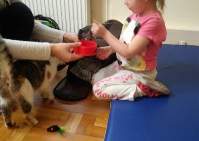 dziewczynka karmiąca kota