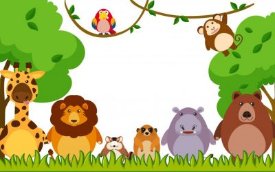 Zwierzęta w zoo (2) – słowniczek
