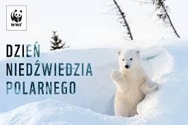 Dzień Niedźwiedzia Polarnego